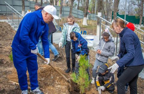 Глава Владивостока высадил кедры вместе с учащимися школы-интерната