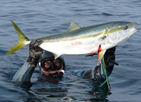 Рыбным рынком и не пахнет: обещания ВЭФ канули в Лету