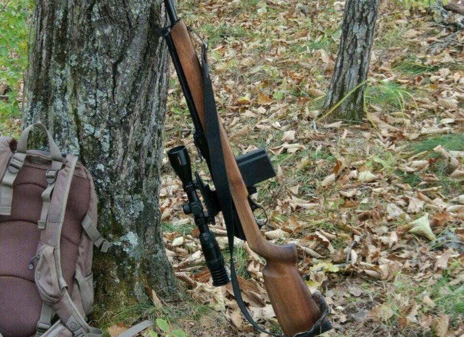 В России появились новые правила охоты