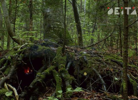 Потерявшихся в лесу дальневосточниц нашли неделю спустя