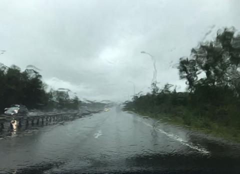 Сильные дожди ожидаются в Приморье