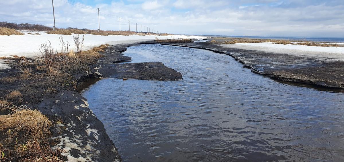Дерьмо-река ужасает носы дальневосточников