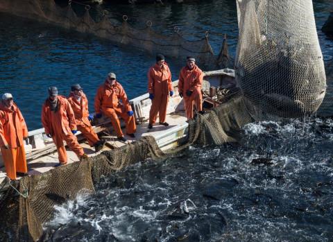 Новый запрет ввели для дальневосточных рыболовов