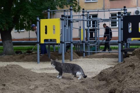 Темпы благоустройства дворов Уссурийска проинспектировал Евгений Корж