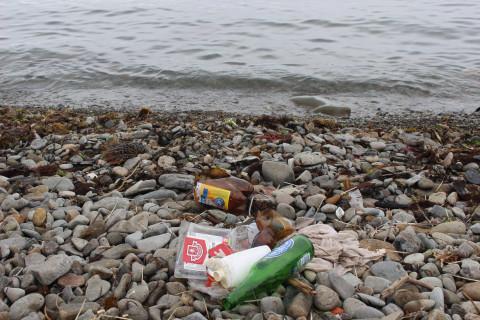 Неизвестным зелёным веществом загрязнили приморскую реку