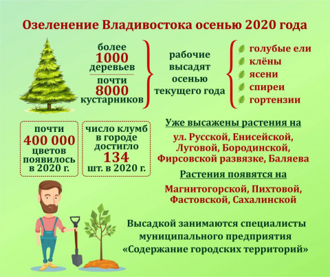 Масштабное озеленение Владивостока продолжится осенью