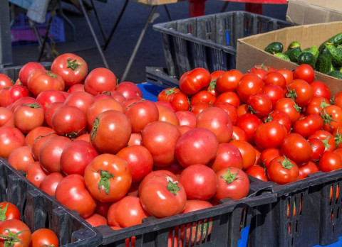 Новый овощной кризис может грозить Приморью