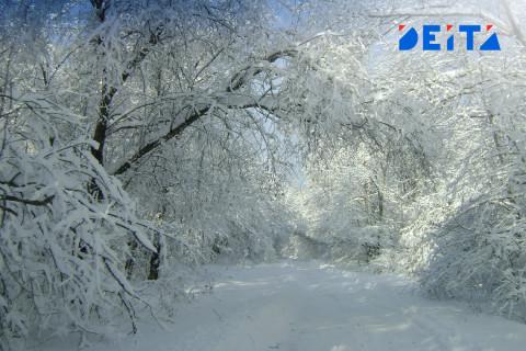 Тёплые и снежные выходные ждут приморцев