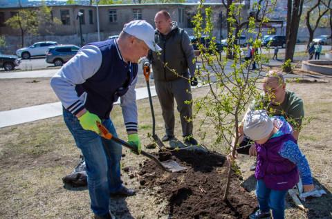Новые деревья и кустарники высадили во Владивостоке
