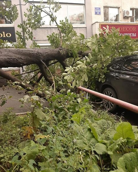 Тайфун «Майсак» крушит Приморье (обновляется)