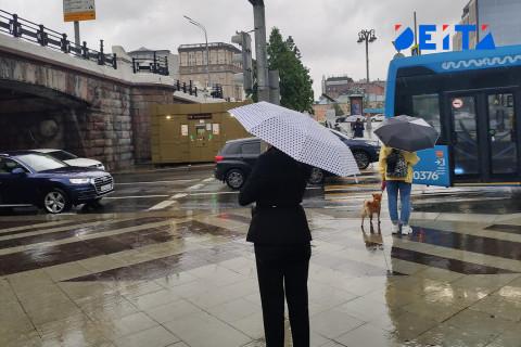 В Приморье ожидается дождь