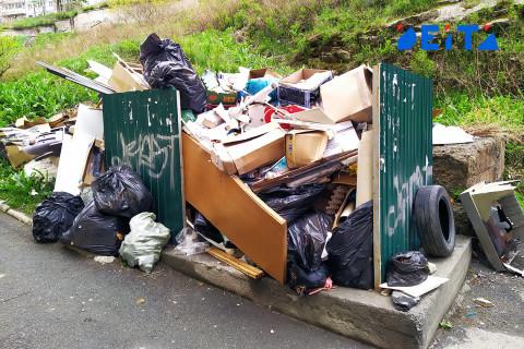 Преступный замысел мусоровозной компании раскрыт во Владивостоке