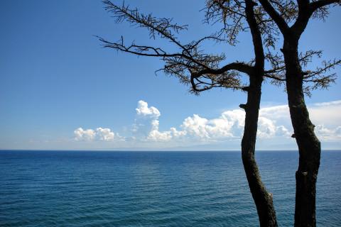 Экологическая угроза нависла над Байкалом