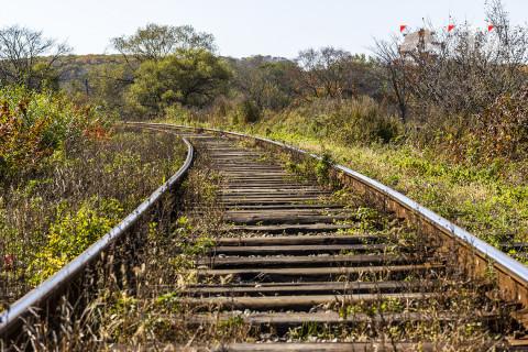 Железные дороги разбирают на металлолом на Дальнем Востоке