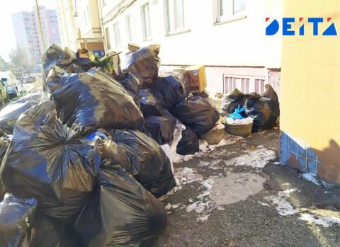Новогодний сюрприз: Владивосток завален мусором