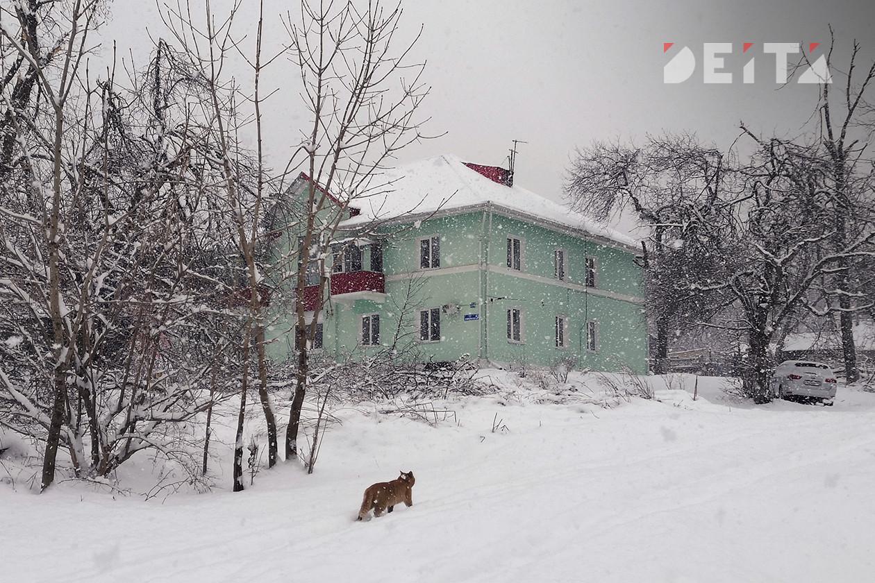 Суббота в Приморье будет тёплой и снежной