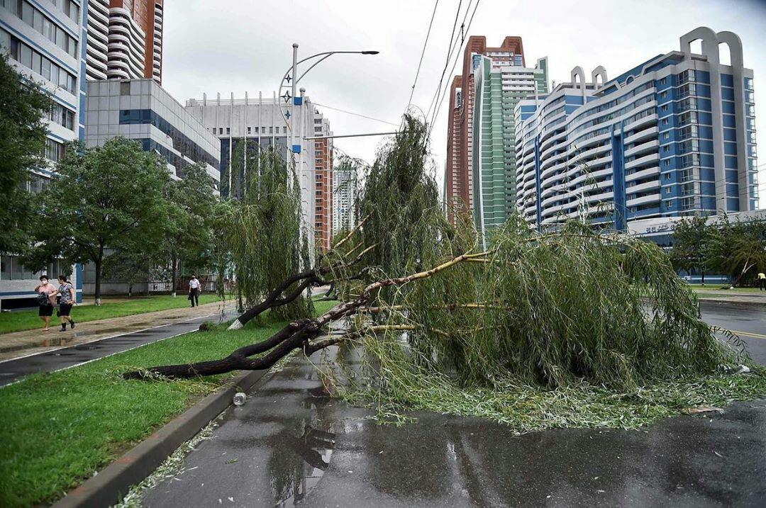 Ким Чен Ын накажет чиновников за плохую подготовку к тайфуну