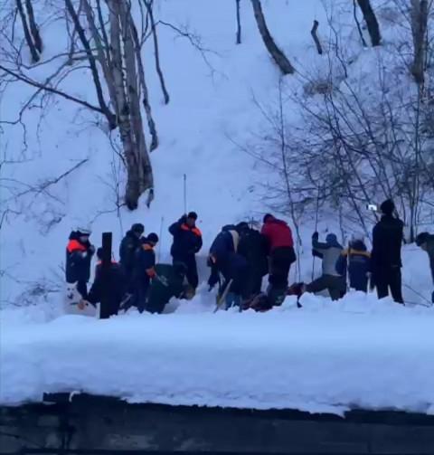 Спасатели ищут людей под сошедшей лавиной на Камчатке