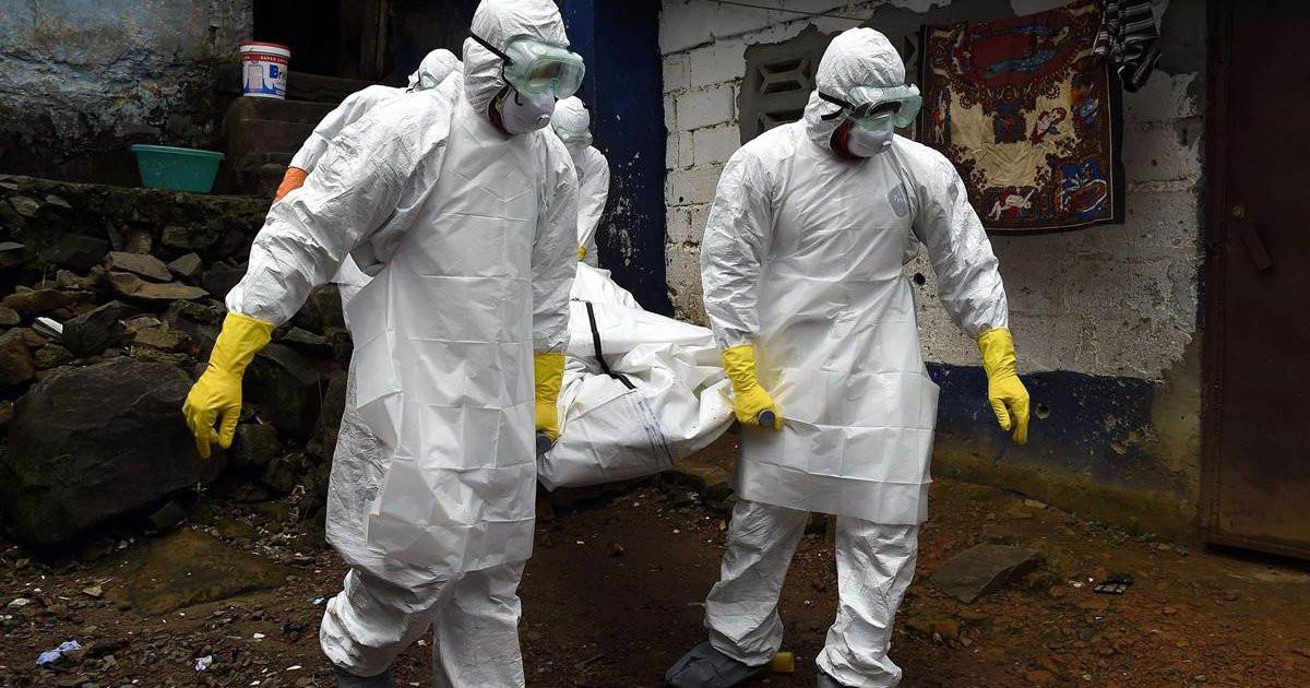 Китай бьёт тревогу: в страну вернулась бубонная чума