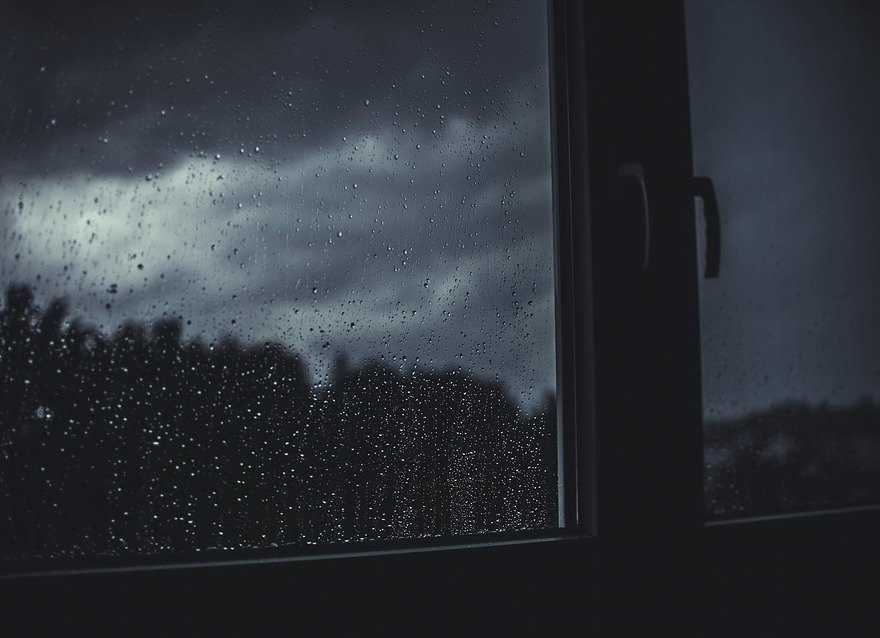 Новая неделя в Приморье начинается с дождя и урагана