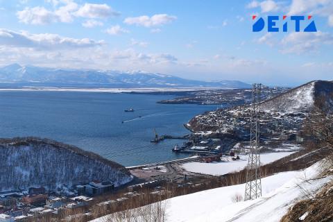 Россияне создали петицию с призывом ликвидировать экологическую катастрофу на Камчатке