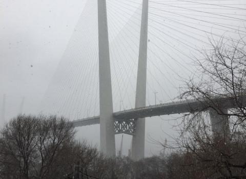 В Приморье дождь, гроза и туман. Но это не точно