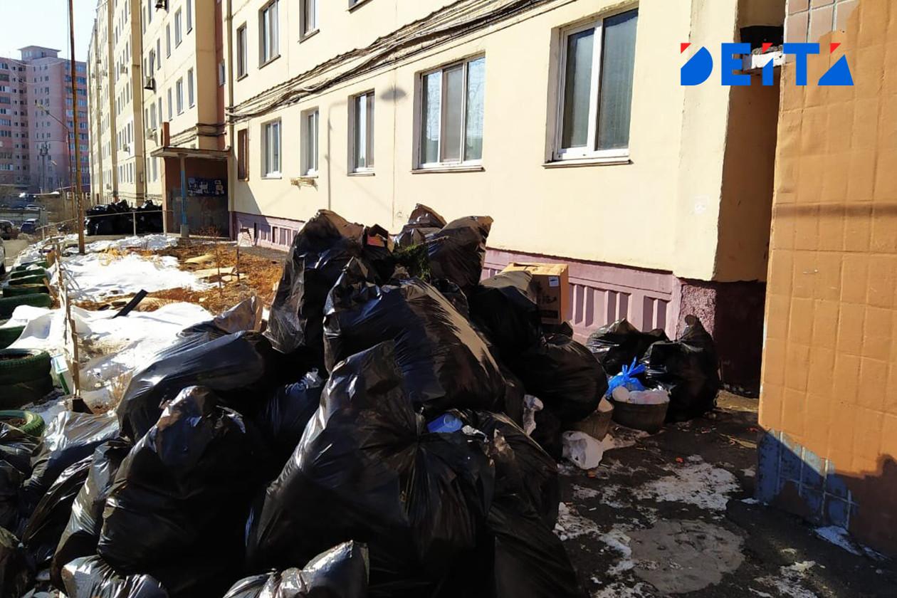 Владивостокцы приняли за мусор машину таксиста