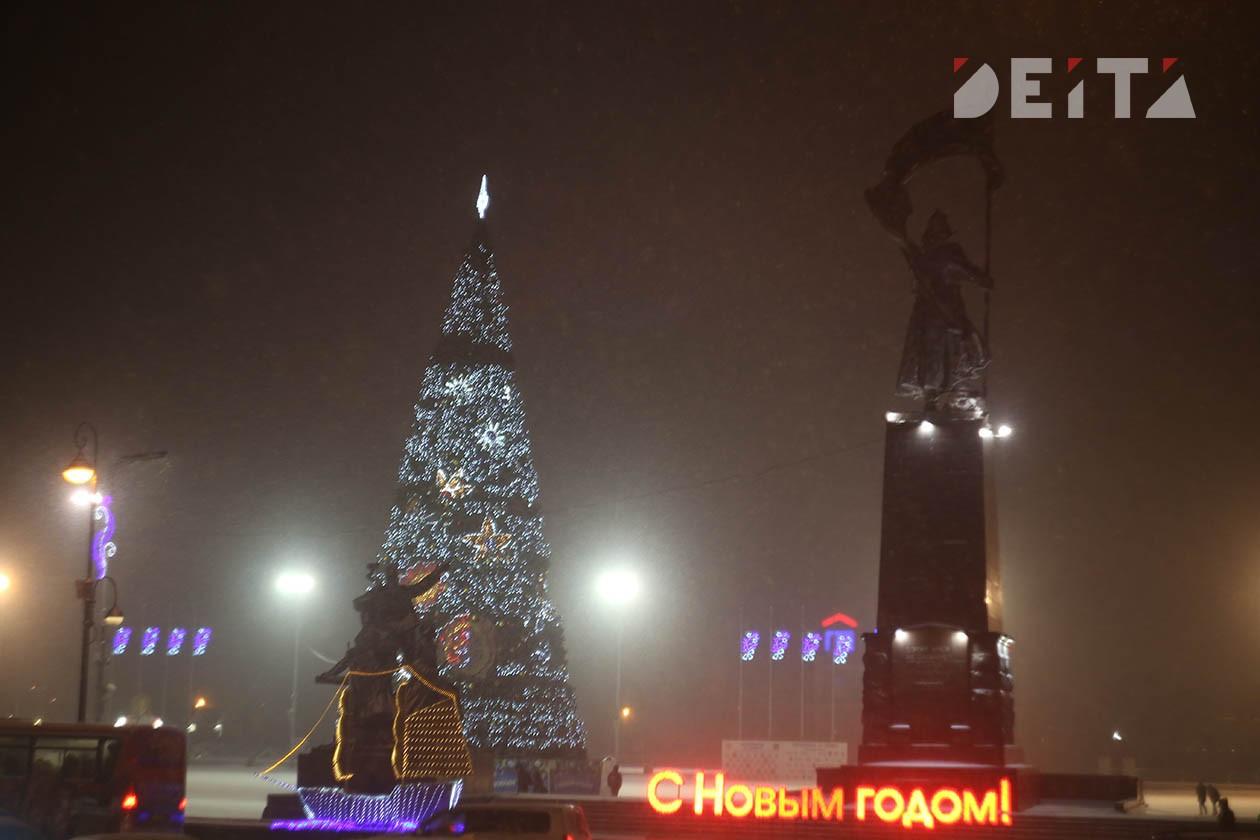 Новогодние елки Пушкарева стали поводом для уголовного дела