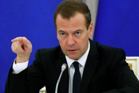 Медведев решил разобраться с водорослями Солодова