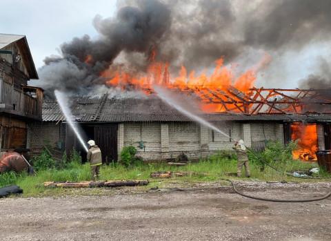 Пожар в садоводческом товариществе унёс жизни двух приморцев
