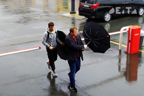 Лето отменяется: дожди и грозы на выходных обещают синоптики