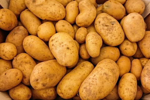 Россиян предупредили о резком подорожании картофеля