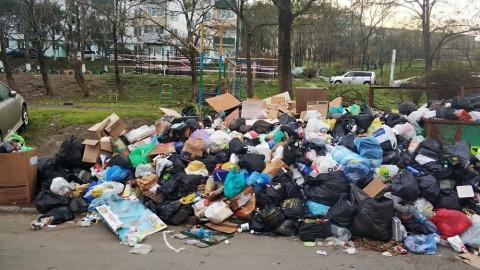 Приморье надеется избежать повторения мусорного коллапса