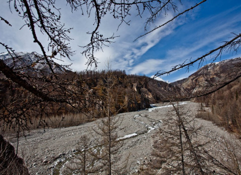 Приморские синоптики отменили снегопад и пообещали оттепели на выходных