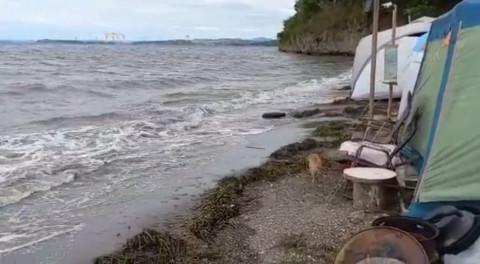 МЧС предупреждало: тайфун смывает палатки туристов в море