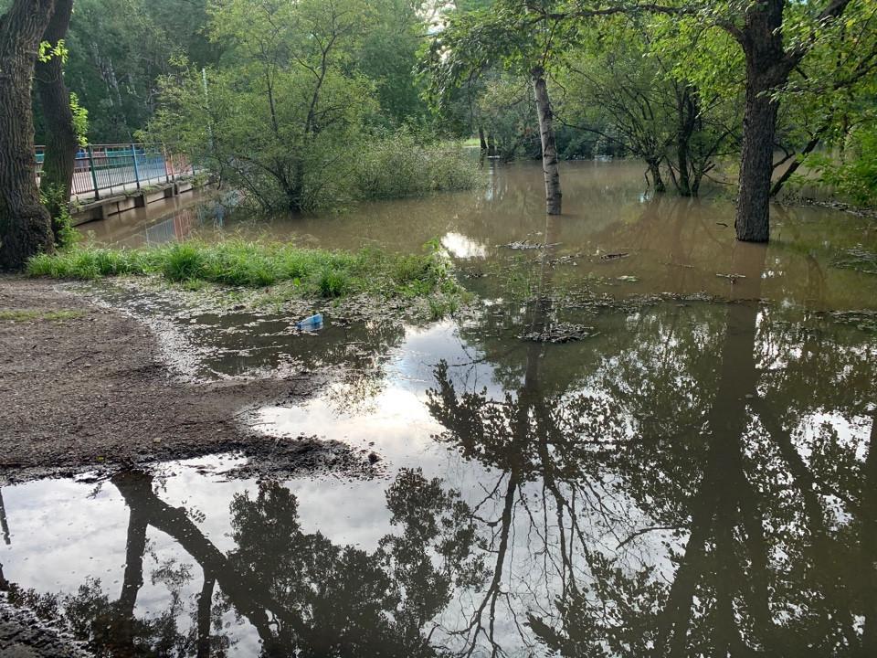 Реки вышли из берегов в Приморье: вода продолжает прибывать