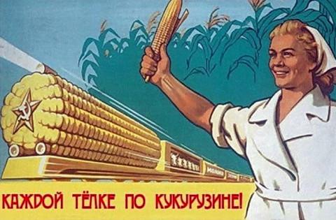 «Каждой телке по кукурузине»: «царицей полей» снова собрались озолотить россиян