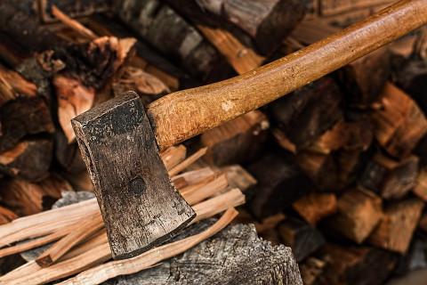 Рубить дрова без Интернета разрешат в России