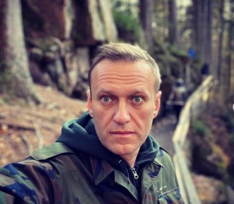 Лечивший Навального врач пропал в лесу
