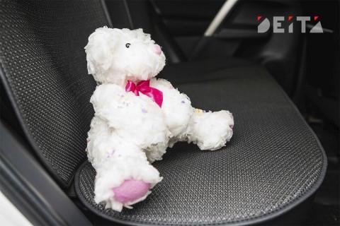 Приморцам напомнили о детских креслах в авто