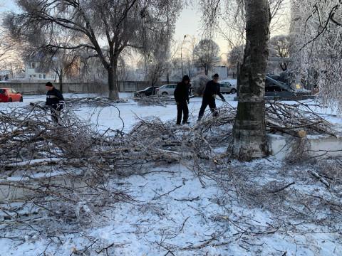 Приморцы пожаловались заместителю генпрокурора на затянувшийся ремонт ЛЭП после ледяного шторма