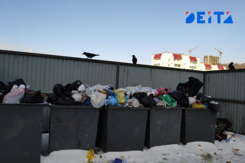 Сортировка мусора в России совершит рывок в 2021 году