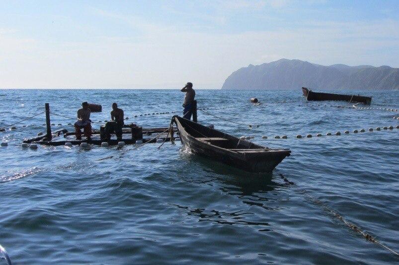 «Порт «Вера» поздравляет работников рыбохозяйственной отрасли  с профессиональным праздником