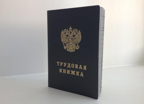 Россияне проигнорировали электронные трудовые книжки