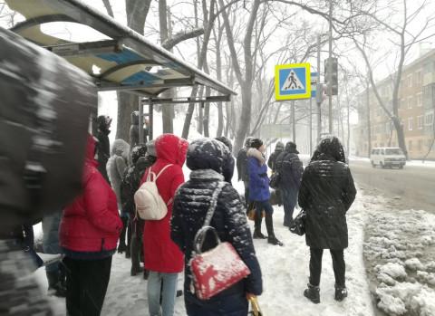 Снежный коллапс во Владивостоке (обновляется)