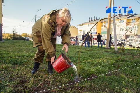 Россиян обеспечат временной работой