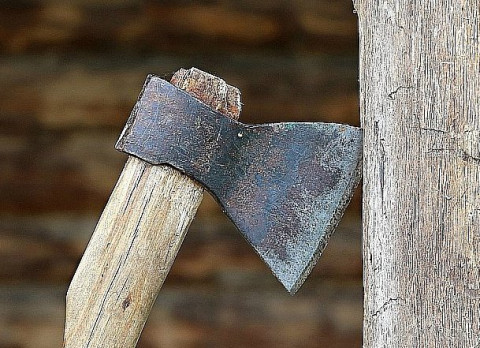 «Чёрные мясники» терроризируют Приморье: Свалку трупов нашли возле популярного места отдыха
