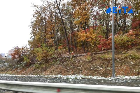 Пятница 13-е принесет в Приморье дождь со снегом