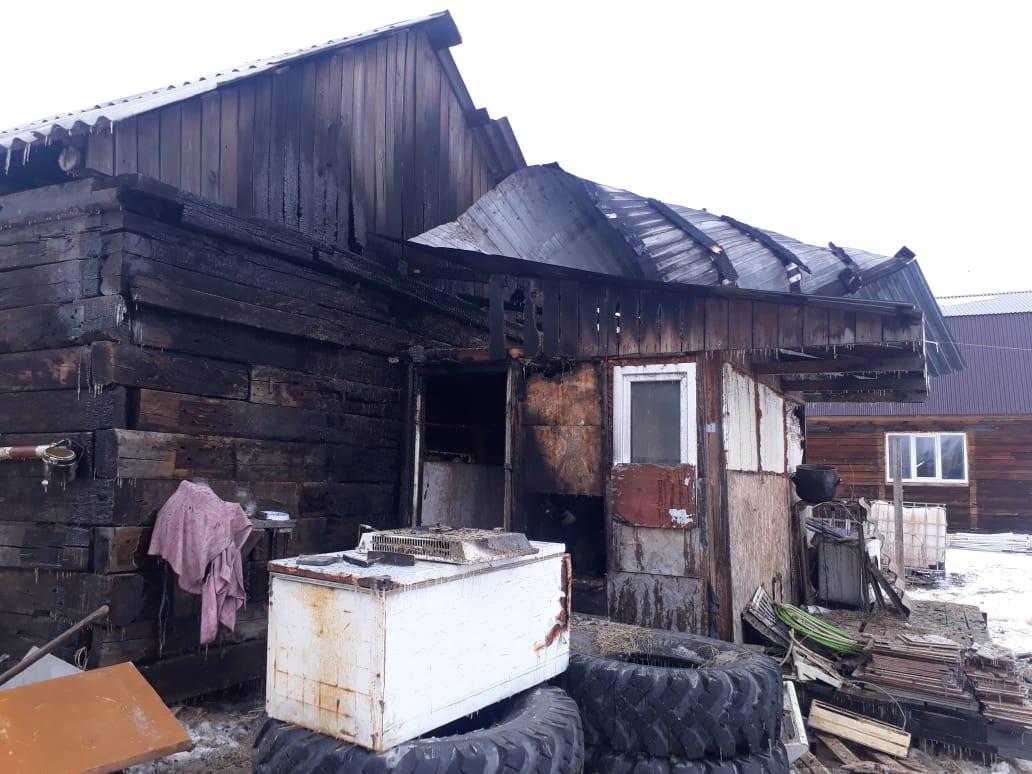 Переполох в курятнике предотвратили пожарные