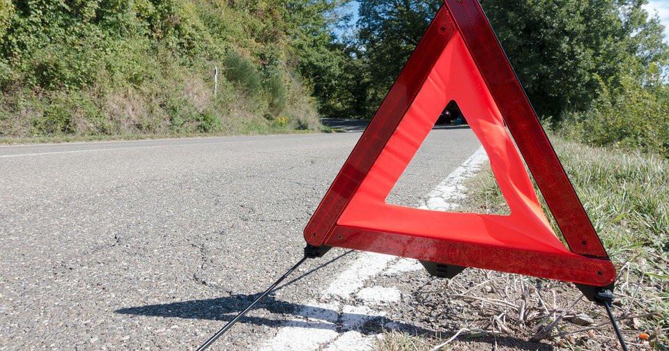 Опасность в лесу подстерегает водителей летом